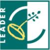 Leader EU logo
